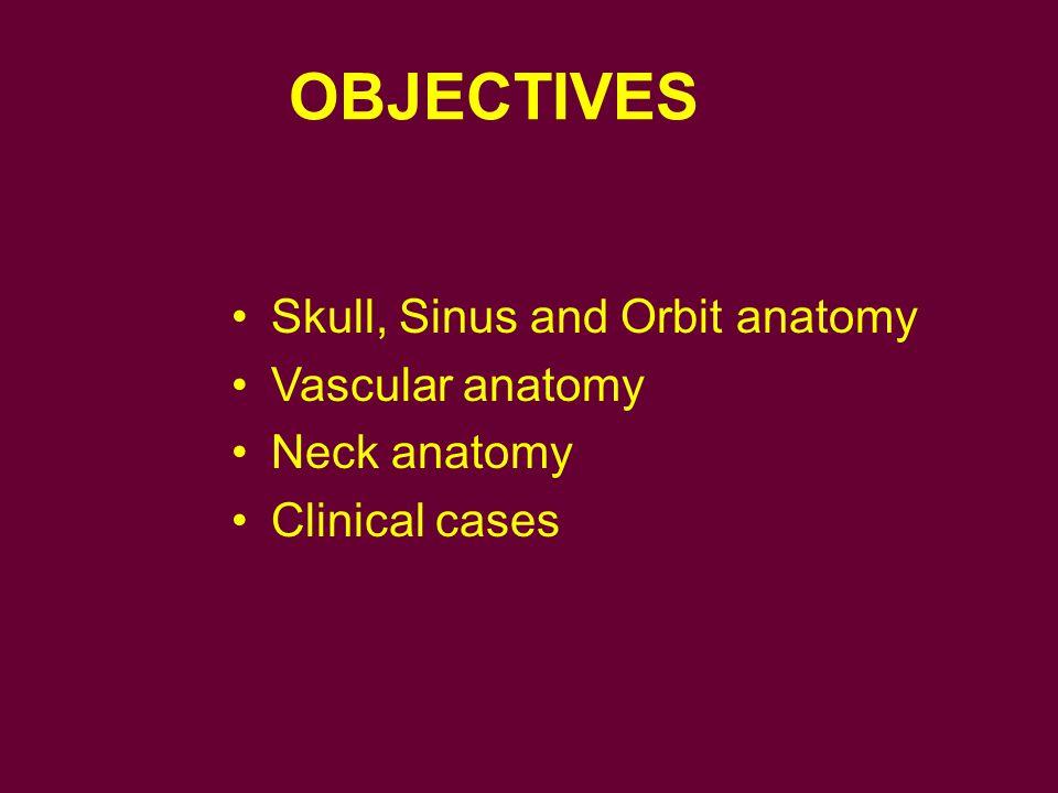 OBJECTIVES Skull, Sinus and Orbit anatomy Vascular anatomy Neck anatomy Clinical cases