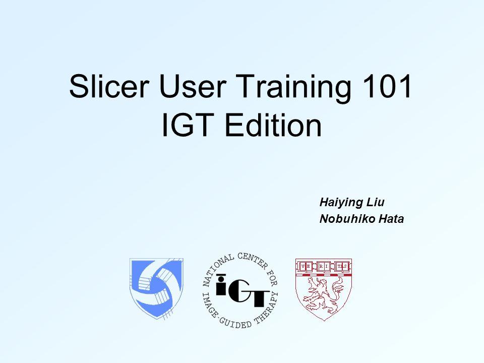 Slicer User Training 101 IGT Edition Haiying Liu Nobuhiko Hata
