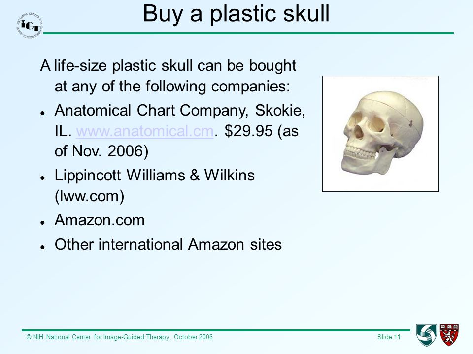 © NIH National Center for Image-Guided Therapy, October 2006 Slide 11 Buy a plastic skull A life-size plastic skull can be bought at any of the follow