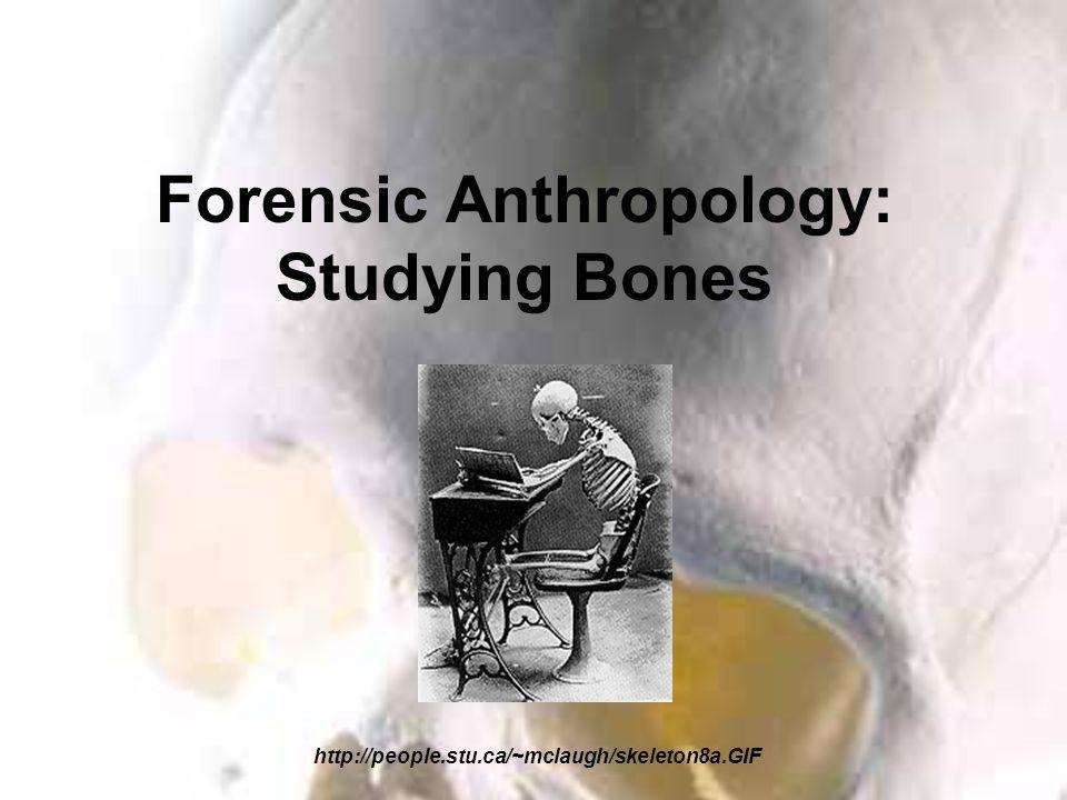 Forensic Anthropology: Studying Bones http://people.stu.ca/~mclaugh/skeleton8a.GIF
