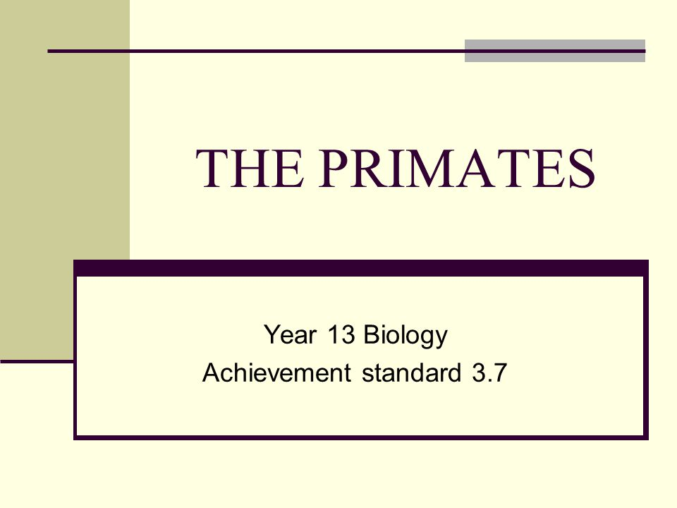 THE PRIMATES Year 13 Biology Achievement standard 3.7