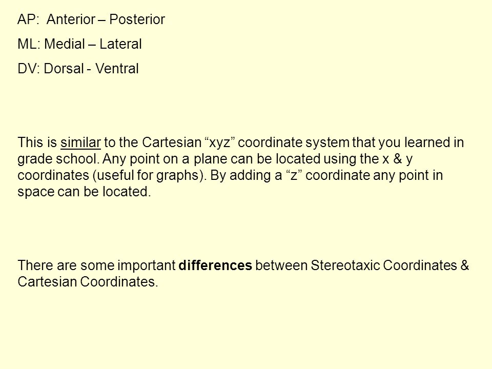 """AP: Anterior – Posterior ML: Medial – Lateral DV: Dorsal - Ventral This is similar to the Cartesian """"xyz"""" coordinate system that you learned in grade"""