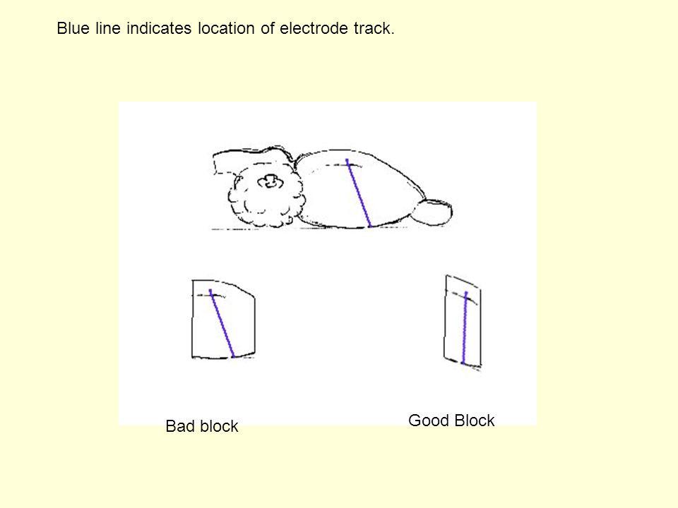 Bad block Good Block Blue line indicates location of electrode track.