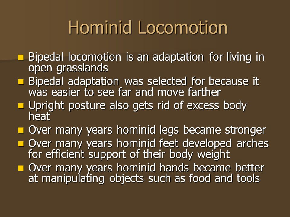Hominid Locomotion Hominid Locomotion Bipedal locomotion is an adaptation for living in open grasslands Bipedal locomotion is an adaptation for living