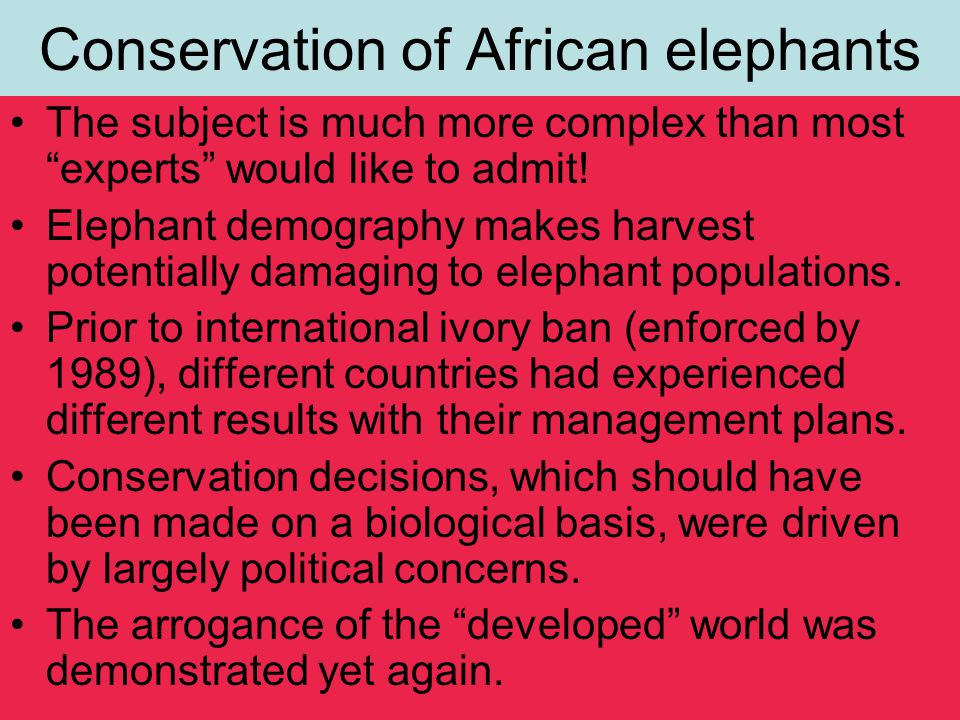 Conservation of African elephants The subject is much more complex than most experts would like to admit.