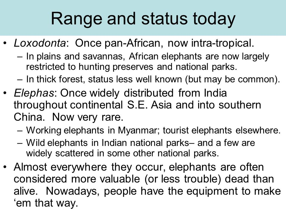 Range and status today Loxodonta: Once pan-African, now intra-tropical.