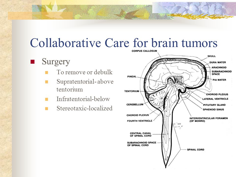 Collaborative Care for brain tumors Surgery To remove or debulk Supratentorial- above tentorium Infratentorial-below Stereotaxic-localized