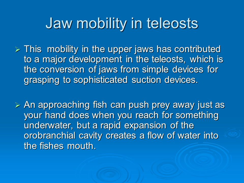 Jaw mobility in teleosts  This mobility in the upper jaws has contributed to a major development in the teleosts, which is the conversion of jaws from simple devices for grasping to sophisticated suction devices.