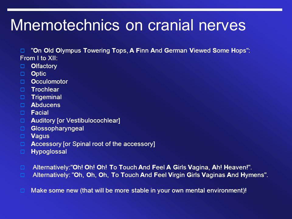 Mnemotechnics on cranial nerves 