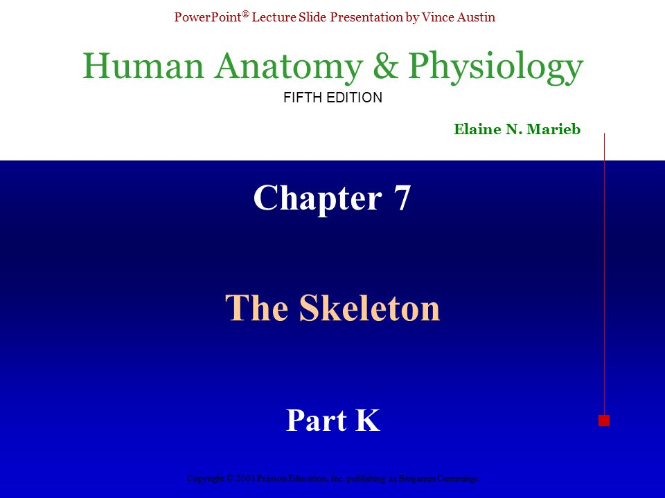 Human Anatomy & Physiology FIFTH EDITION Elaine N.