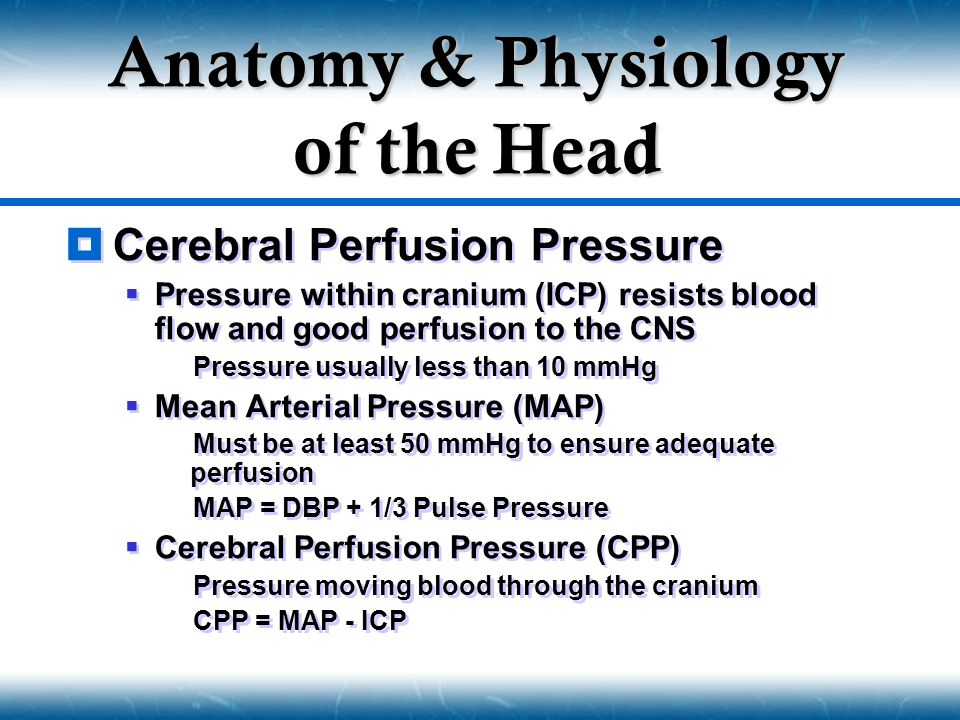  Cerebral Perfusion Pressure  Pressure within cranium (ICP) resists blood flow and good perfusion to the CNS  Pressure usually less than 10 mmHg 