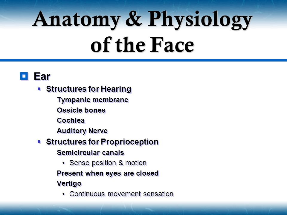  Ear  Structures for Hearing  Tympanic membrane  Ossicle bones  Cochlea  Auditory Nerve  Structures for Proprioception  Semicircular canals Se