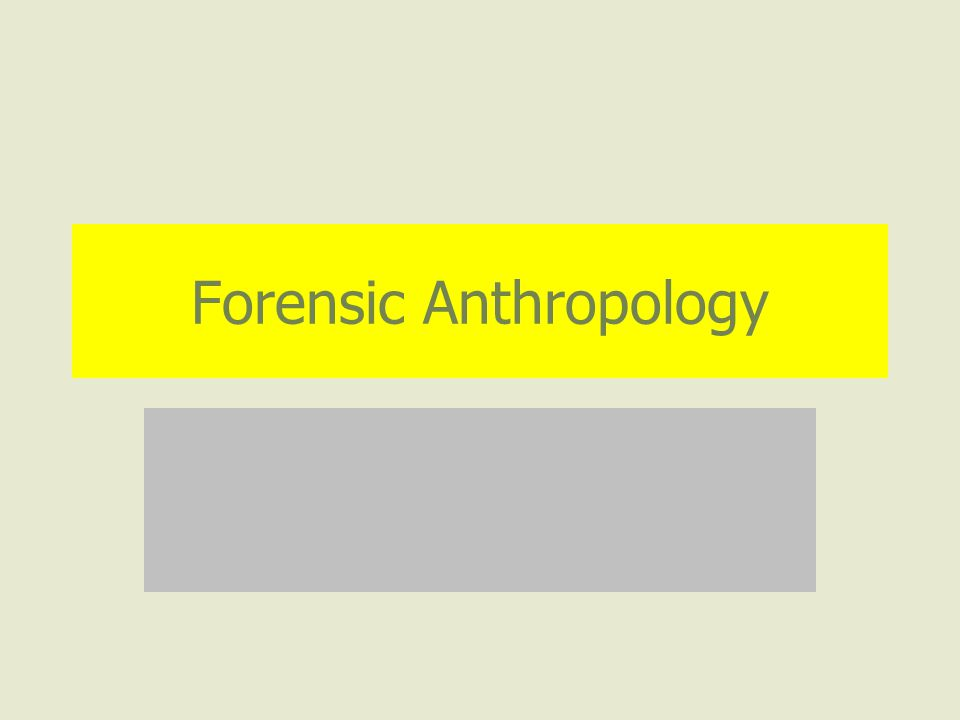 What Questions Can Forensic Anthropology Answer.