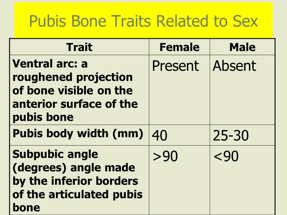 Pubis Bone Traits Related to Sex TraitFemaleMale Ventral arc: a roughened projection of bone visible on the anterior surface of the pubis bone PresentAbsent Pubis body width (mm) 4025-30 Subpubic angle (degrees) angle made by the inferior borders of the articulated pubis bone >90<90