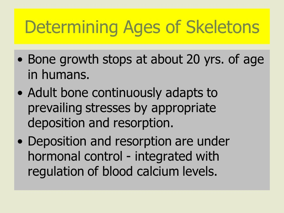 Determining Ages of Skeletons Bone growth stops at about 20 yrs.