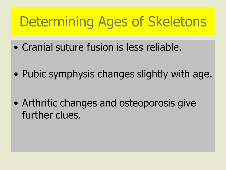 Determining Ages of Skeletons Cranial suture fusion is less reliable.
