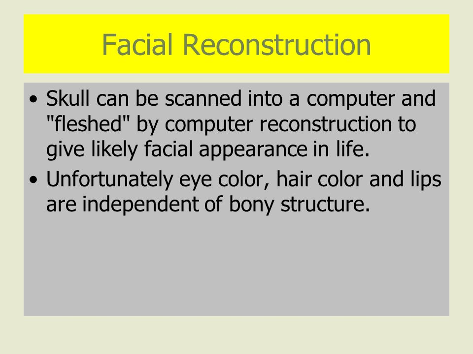 Facial Reconstruction Skull can be scanned into a computer and fleshed by computer reconstruction to give likely facial appearance in life.