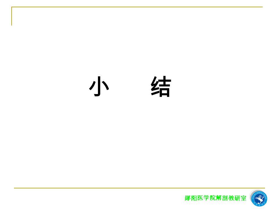 郧阳医学院解剖教研室 小 结