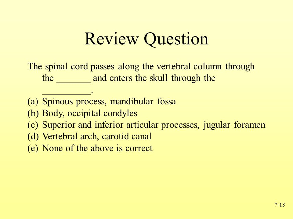 7-13 Review Question The spinal cord passes along the vertebral column through the _______ and enters the skull through the __________. (a)Spinous pro