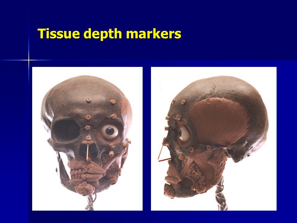 Tissue depth markers