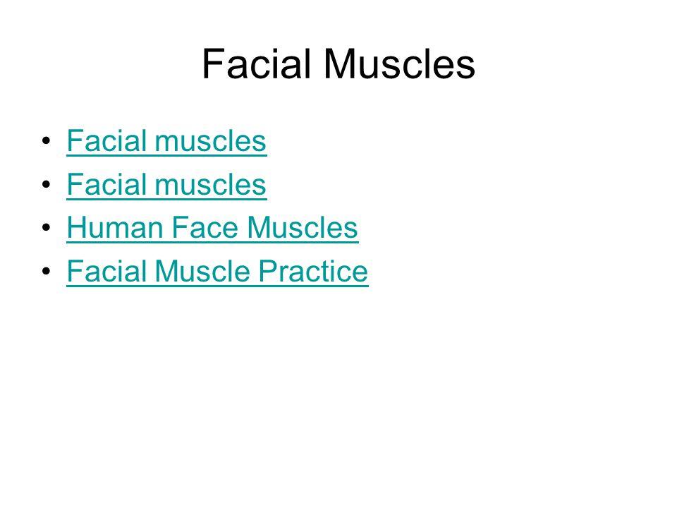Facial Muscles Facial muscles Human Face Muscles Facial Muscle Practice