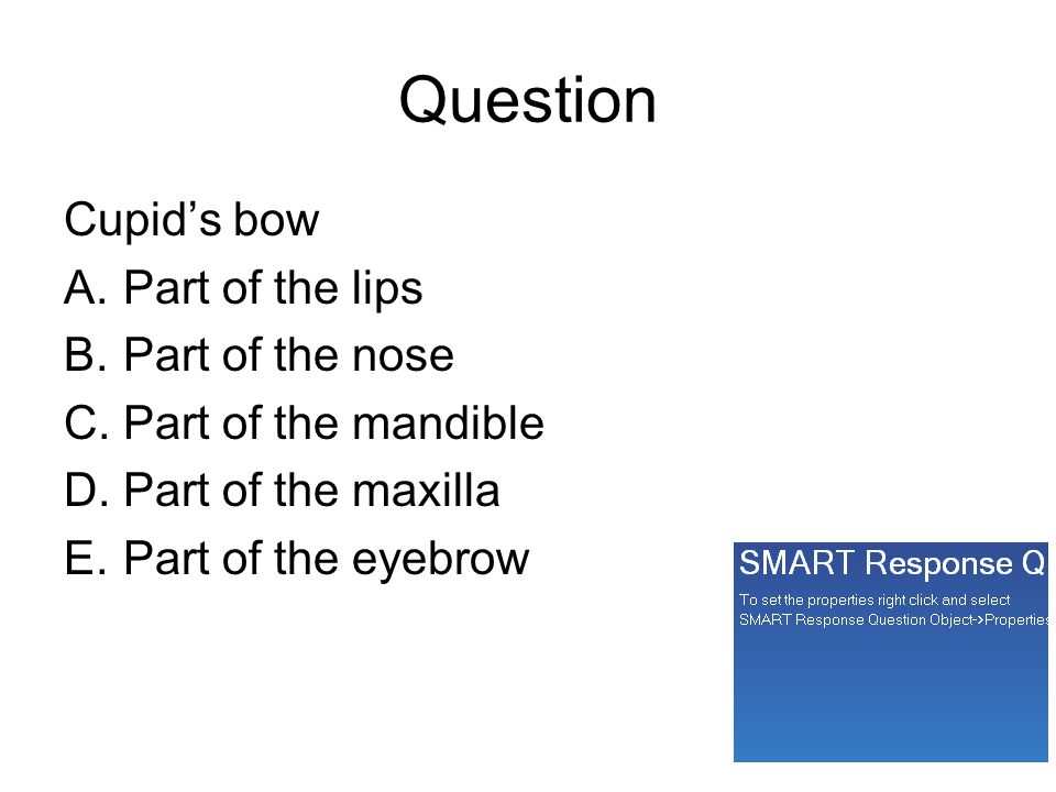 Question Cupid's bow A.Part of the lips B.Part of the nose C.Part of the mandible D.Part of the maxilla E.Part of the eyebrow