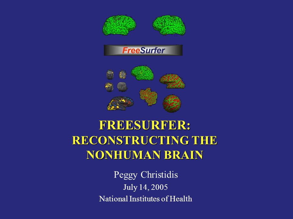 FREESURFER: RECONSTRUCTING THE NONHUMAN BRAIN Peggy Christidis July 14, 2005 National Institutes of Health