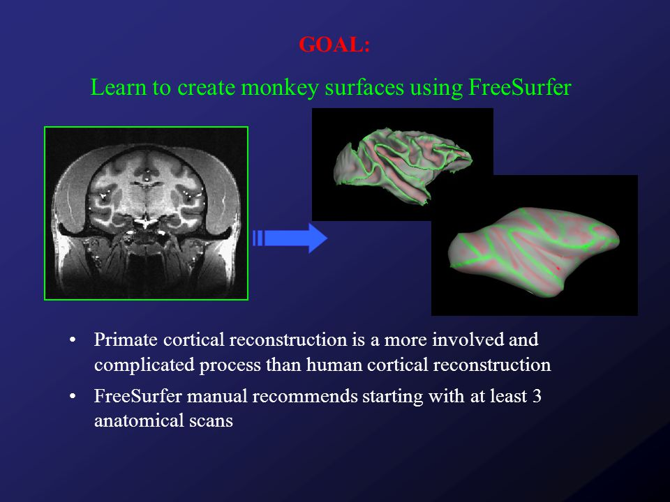 GOAL: Primate cortical reconstruction is a more involved and complicated process than human cortical reconstruction FreeSurfer manual recommends starting with at least 3 anatomical scans Learn to create monkey surfaces using FreeSurfer