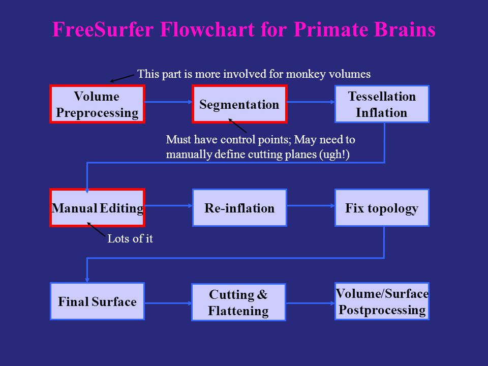 FreeSurfer Flowchart for Primate Brains Volume Preprocessing Segmentation Tessellation Inflation Manual Editing Re-inflationFix topology Final Surface Volume/Surface Postprocessing Cutting & Flattening This part is more involved for monkey volumes Must have control points; May need to manually define cutting planes (ugh!) Lots of it