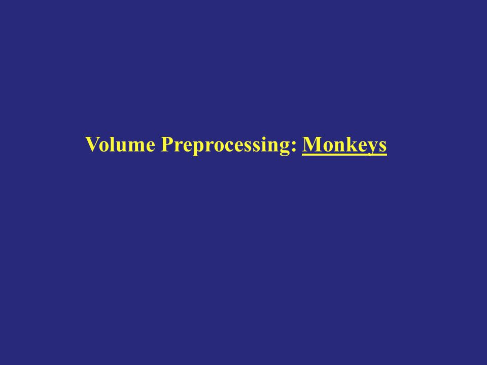 Volume Preprocessing: Monkeys