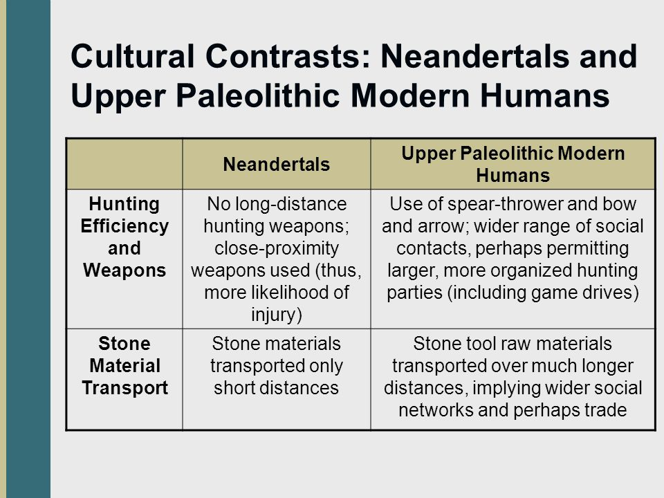 Cultural Contrasts: Neandertals and Upper Paleolithic Modern Humans Neandertals Upper Paleolithic Modern Humans Hunting Efficiency and Weapons No long