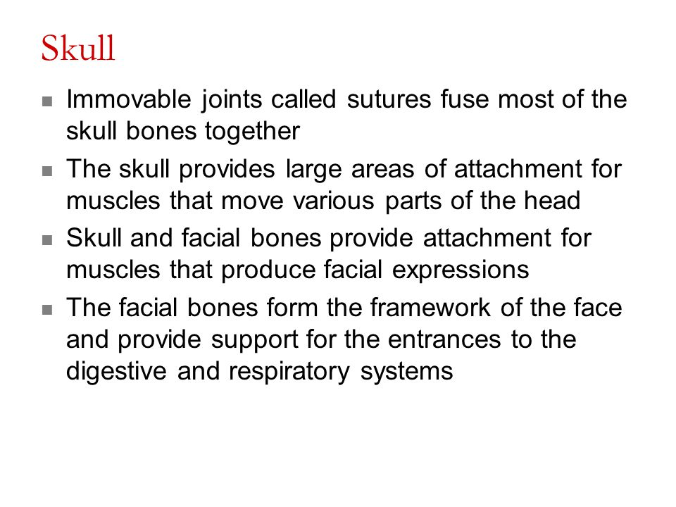 Skull Immovable joints called sutures fuse most of the skull bones together The skull provides large areas of attachment for muscles that move various