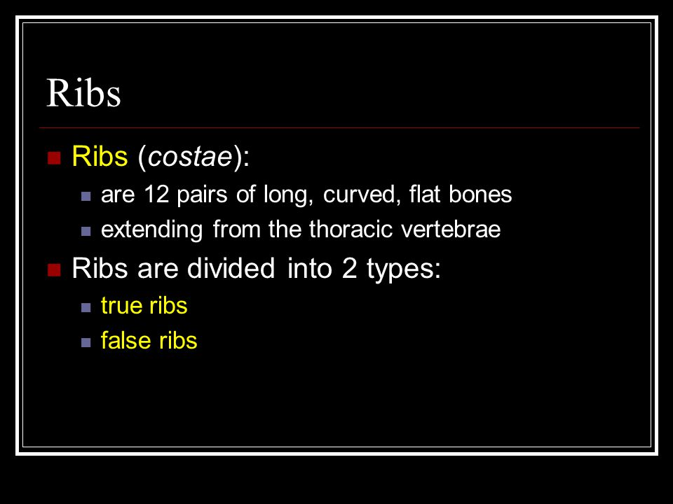 Ribs Ribs (costae): are 12 pairs of long, curved, flat bones extending from the thoracic vertebrae Ribs are divided into 2 types: true ribs false ribs