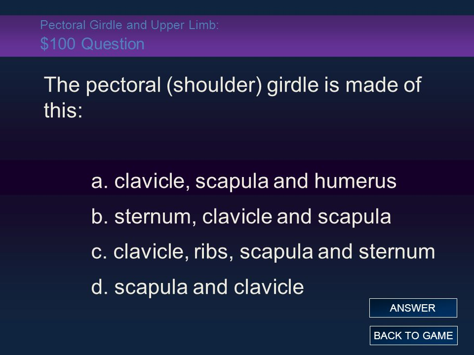 Pectoral Girdle and Upper Limb: $100 Question The pectoral (shoulder) girdle is made of this: a. clavicle, scapula and humerus b. sternum, clavicle an