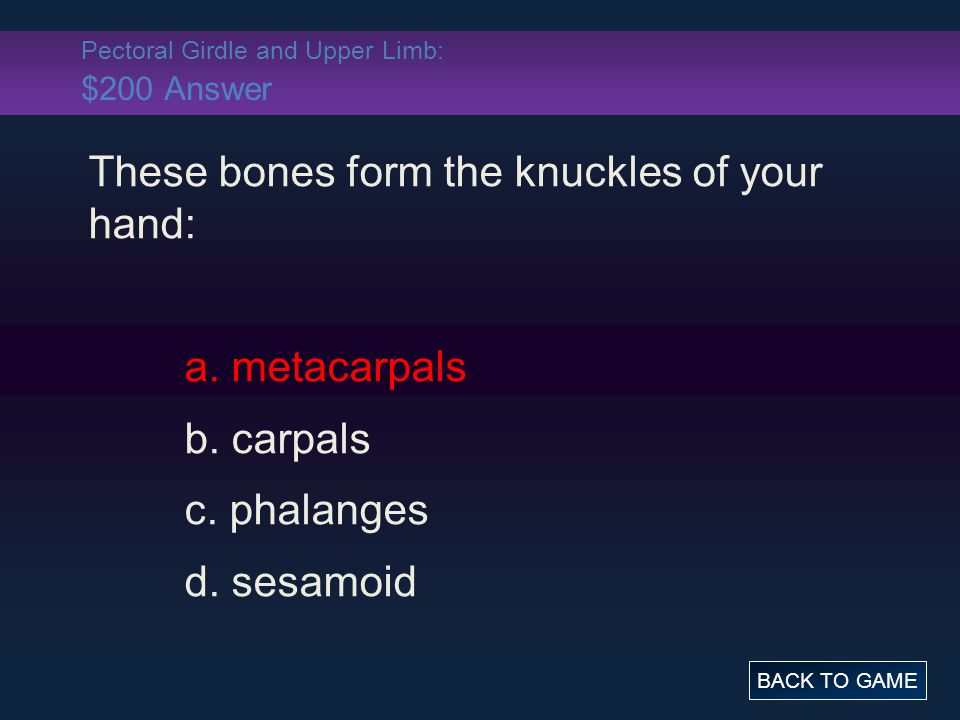 Pectoral Girdle and Upper Limb: $200 Answer These bones form the knuckles of your hand: a. metacarpals b. carpals c. phalanges d. sesamoid BACK TO GAM