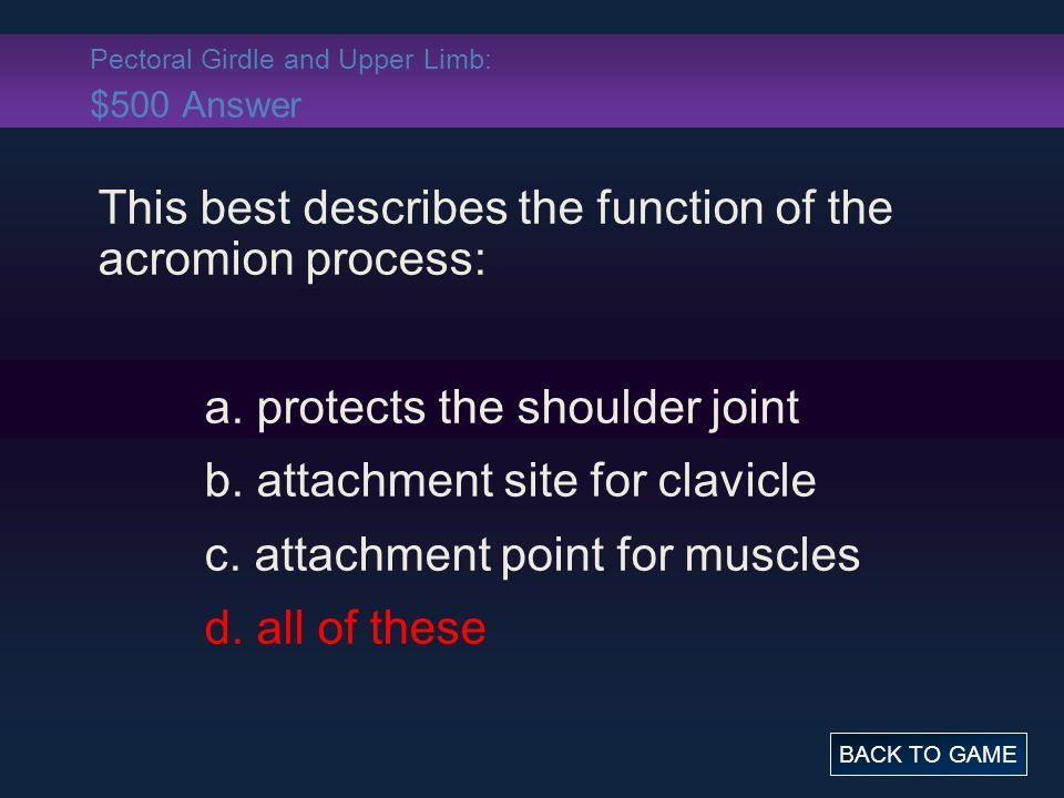 Pectoral Girdle and Upper Limb: $500 Answer This best describes the function of the acromion process: a. protects the shoulder joint b. attachment sit