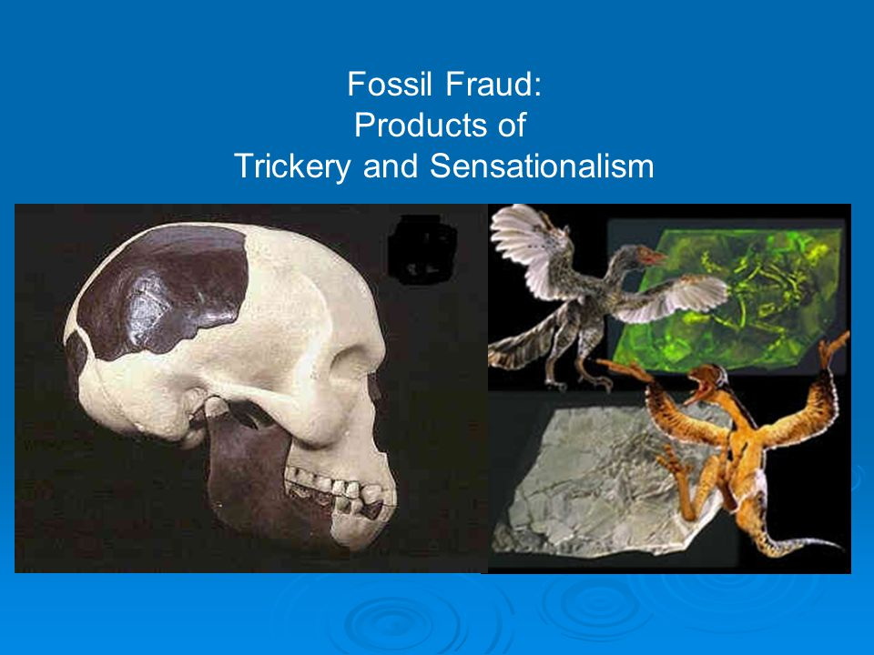 Fossil Fraud: Products of Trickery and Sensationalism