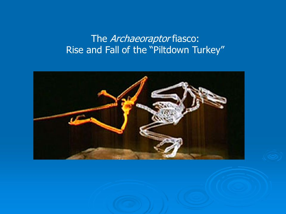 "The Archaeoraptor fiasco: Rise and Fall of the ""Piltdown Turkey"""