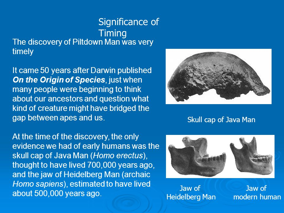The find made the two men very excited because the jaw was very ape-like and the skull fragments were definitely of human origin.