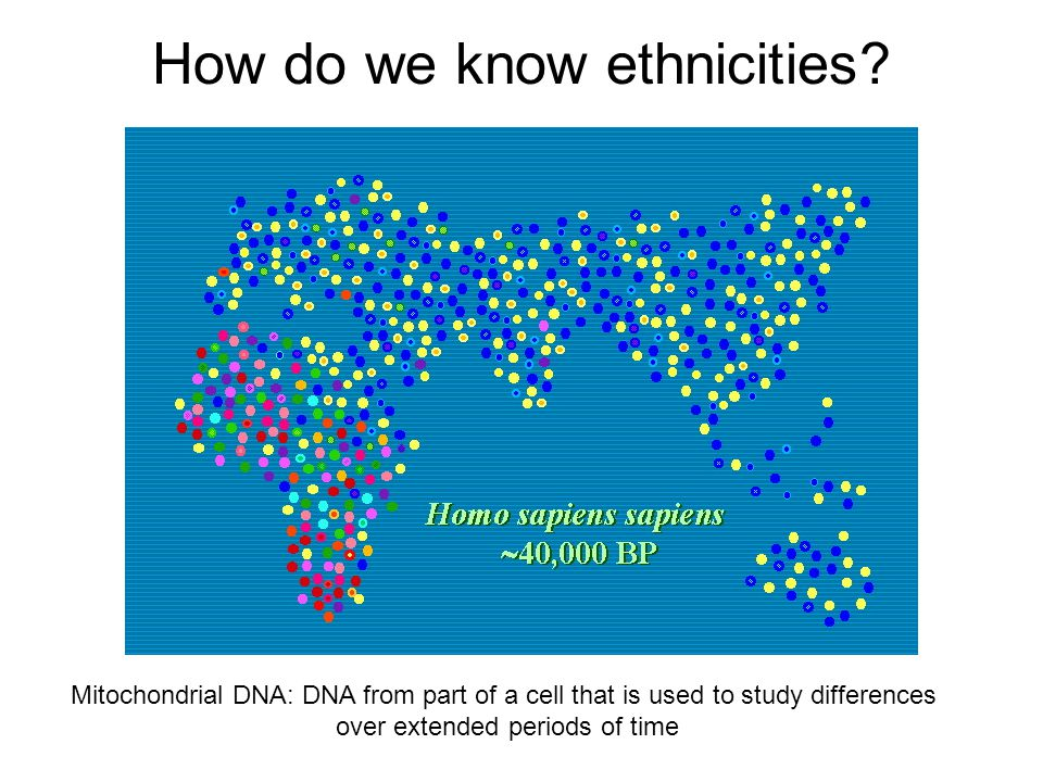 How do we know ethnicities? Mitochondrial DNA: DNA from part of a cell that is used to study differences over extended periods of time