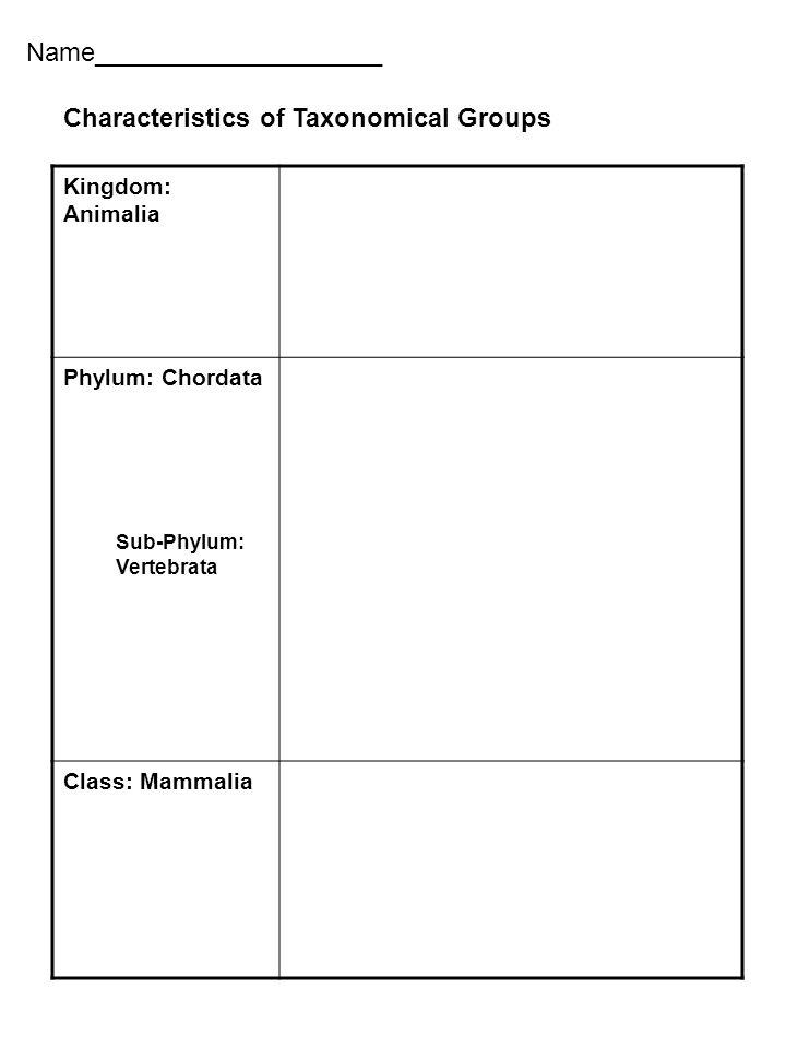 Name____________________ Kingdom: Animalia Phylum: Chordata Sub-Phylum: Vertebrata Class: Mammalia Characteristics of Taxonomical Groups