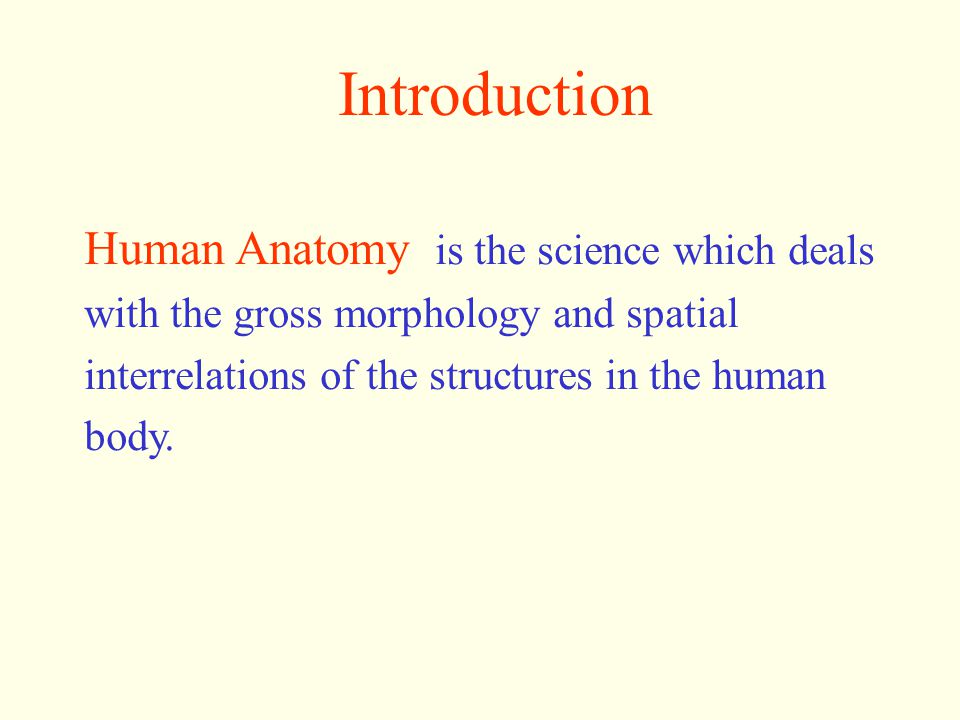 Owing to different methods and purposes of study, human anatomy is generally classified into : Gross anatomy Developmental Anatomy Radiographic Anatomy Clinical Anatomy Systematic Anatomy Regional Anatomy Microscopic Anatomy Histology Embryology Cytology