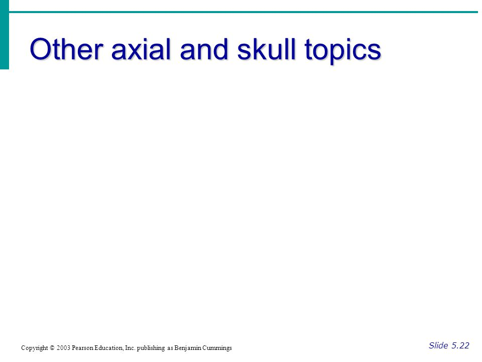 Other axial and skull topics Slide 5.22 Copyright © 2003 Pearson Education, Inc.