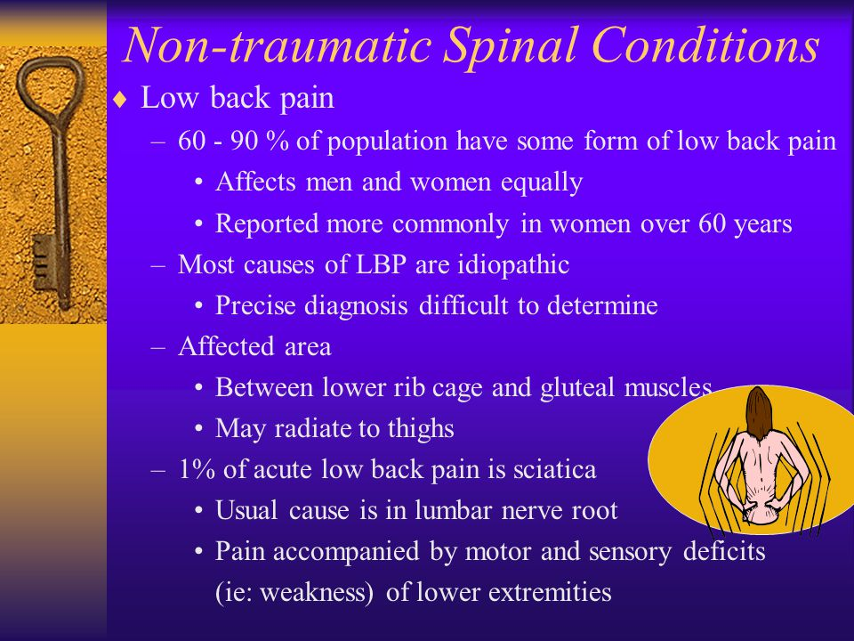 Non-traumatic Spinal Conditions  Low back pain –60 - 90 % of population have some form of low back pain Affects men and women equally Reported more c
