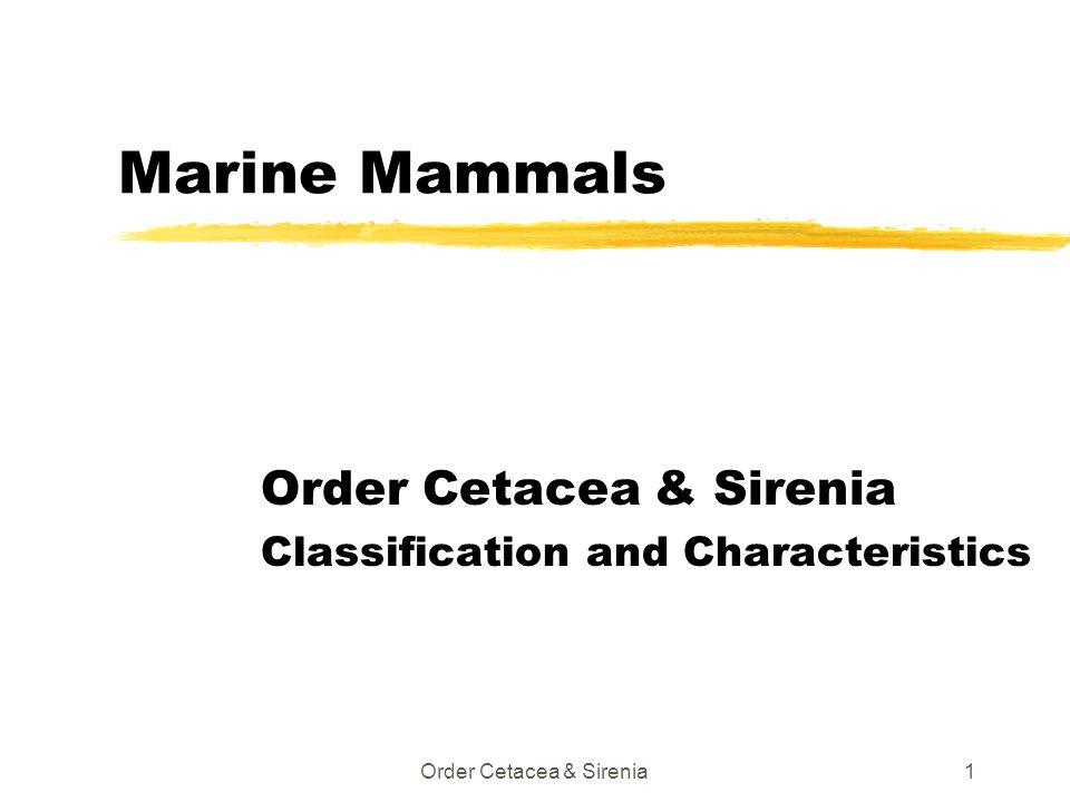 Order Cetacea & Sirenia1 Marine Mammals Order Cetacea & Sirenia Classification and Characteristics