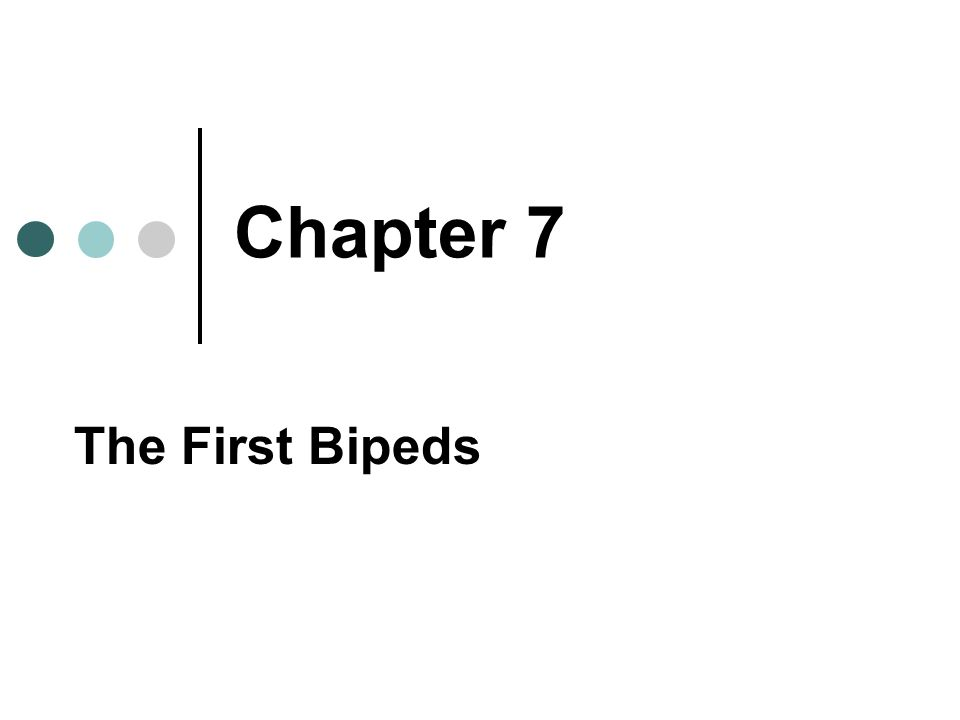 Chapter 7 The First Bipeds