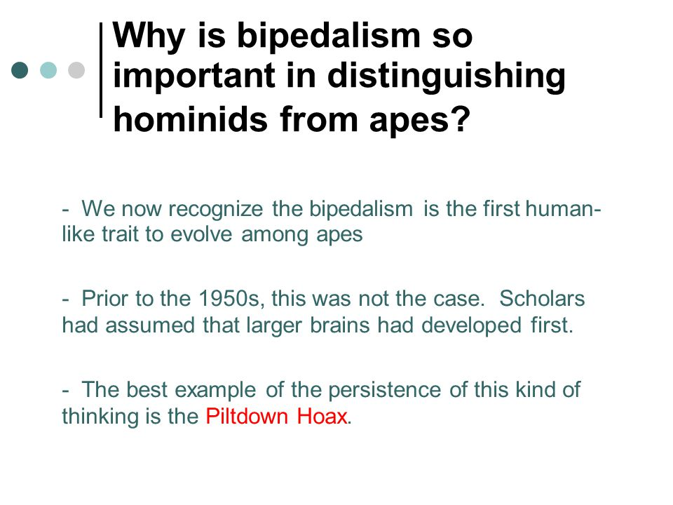 Why is bipedalism so important in distinguishing hominids from apes? - We now recognize the bipedalism is the first human- like trait to evolve among