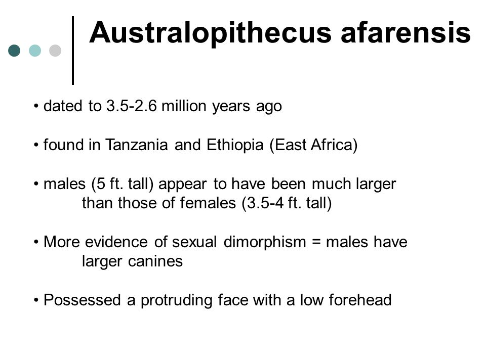 Australopithecus afarensis dated to 3.5-2.6 million years ago found in Tanzania and Ethiopia (East Africa) males (5 ft. tall) appear to have been much