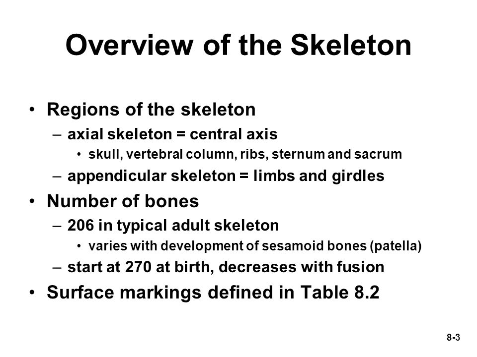 8-4 Surface Features of Bones