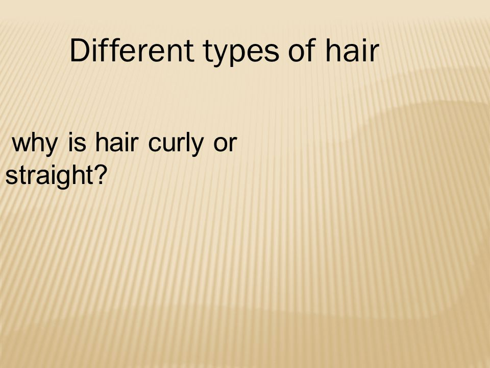 Different types of hair why is hair curly or straight?